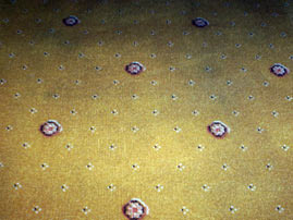 Before picture of a dirty domestic carpet