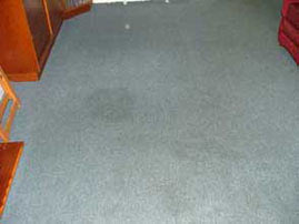 Pet stain removal. Before.